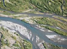 An aerial view of the braided waterways on the Copper River Delta, Alaska. Coho salmon are visible in the center channel, holding in deeper water while they wait to spawn in the smaller channels. USDA Forest Service photo by Steve Wondzell.