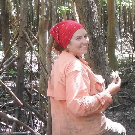 Sampling plot selection in the Zambezi Delta mangroves