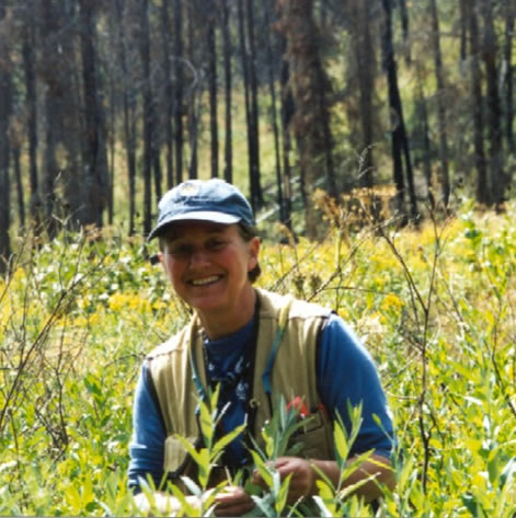 Kate Dwire - Research Riparian Ecologist