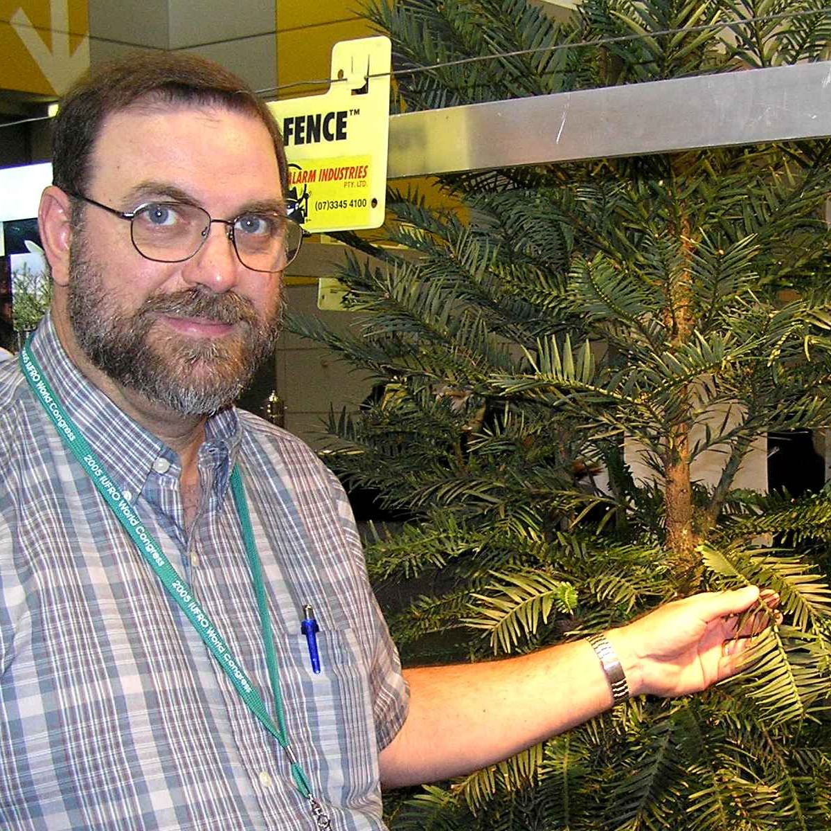 Kurt with the newly discovered Wollemi Pine in Australia.