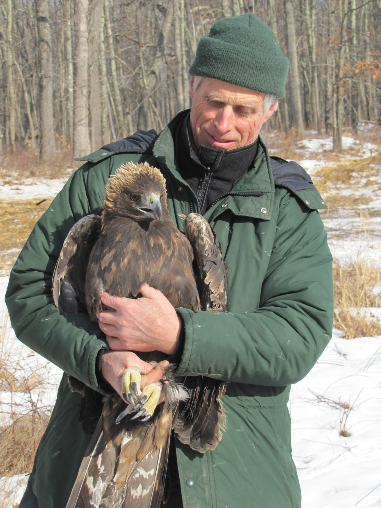 Grubb with Golden Eagle