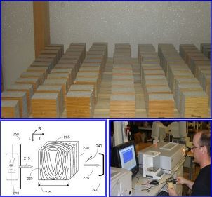 Photo of X-ray radiation method to determine moisture gradient in wood. Forest Service