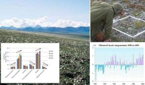 Photo of Arctic average temperatures have risen at almost twice the rate of the rest of the world over the past few decades. Herbaceous dicots, sedges and grasses, and shrubs have been increasing while the cover of both Sphagnum and other mosses have been decreasing over the last two decades. Forest Service