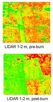 Photo of Light detection and ranging (LIDAR) data showing the cover of understory vegetation a 1 to 2 meter height before and after prescribed fire in the Pine Barrens of New Jersey. <b>Green</b> indicates < 10 % cover, and <b>red</b> indicates > 40% cover.  The area covered by the figures is 9 km<sup>2</sup>.   Forest Service