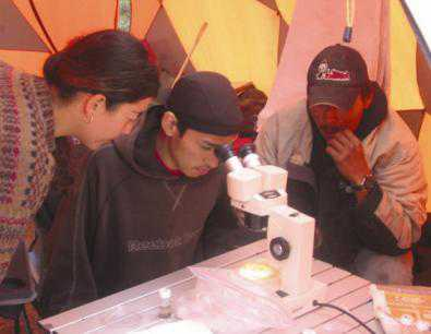 Photo of The arctic field ecology youth-elder-science camp observing microscopic soil invertebrates. Forest Service