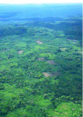 Photo of Shifting agriculture and forest fragmentation in Nicaragua demonstrate some of the complex challenges addressed by the international forest governance regime. Forest Service