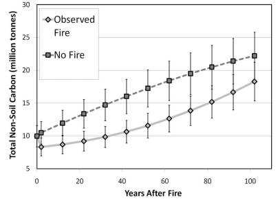 Photo of ForCaMF output showing non-soil carbon storage in all forests burned in Ravalli County, Montana, between 1999 and 2001.  The 100-year projected carbon storage following observed fire patterns and intensities (blue) is contrasted with storage associated with the same stands if no fire had occurred (green).  Error bars represent the standard deviation of 2000 simulations. Forest Service