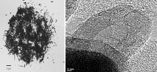 Wood char particles and carbon-encapsulated iron nanoparticles. Forest Service