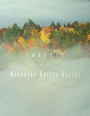 Photo of Forests of the Northern United States uses more than 100 maps, graphs, and tables to summarize current conditions and recent trends for the 172 million acres of forest land in the 20 States that comprise the U.S. North. Forest Service