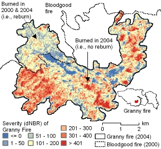 Photo of Burn severity for the Granny fire (2004) in the Gila-Aldo Leopold Wilderness in New Mexico. Qualitatively, it appears as though areas that has previously burned in 2000 had lower burn severity (i.e., dNBR) than areas that had not previously burned. Forest Service