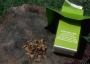 Photo of Gypsy moth trap used to detect new populations. Forest Service