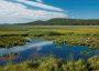 Photo of The Klamath Marsh National Wildlife Refuge provides a wide variety of ecosystem services including clean water and air, wildlife habitat, and scenic beauty. Tom Iraci, Forest Service