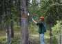 Photo of Researcher applying pheromone-releasing flakes to a whitebark pine bole. <i>Forest Service</i>