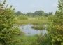 Picture of Wetlands Assessment Project Documents Outcomes of Conservation on Working Lands