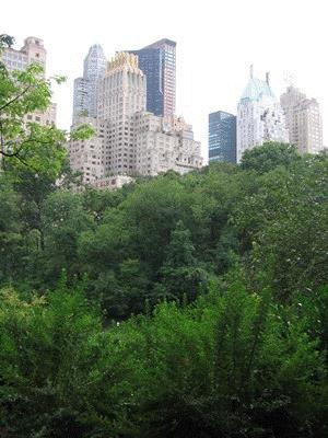 Photo of Trees in New York City Central Park. Dave Nowak, USDA Forest Service