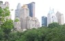 Trees in New York City Central Park. Dave Nowak, USDA Forest Service