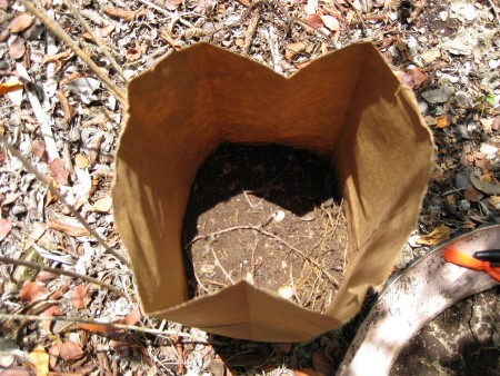 Photo of Soil sample. Thomas J. Brandein, Forest Service