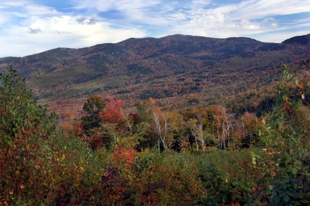 Photo of Looking east toward the Attitash Mountain Range from the Bartlett Experimental Forest, NH. Ken Dudzik, USDA Forest Service