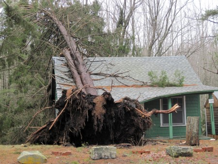 Photo of Tree failure resulting in damage to house, Kennebunkport, ME. USDA Forest Service