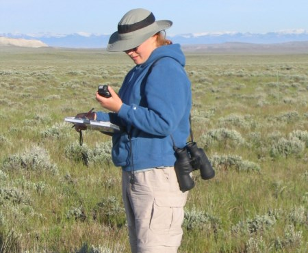 Photo of Standardized sampling of sagebrush habitats can inform management actions for sagebrush obligates like greater sage-grouse. Mary Rowland, USDA Forest Service
