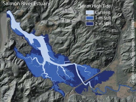 Photo of Mapped elevations that can inform predictions of sea-level rise at the Salmon River Estuary, Oregon. Rebecca Flitcroft, USDA Forest Service