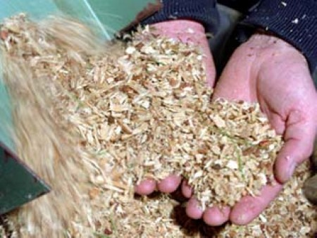 Photo of Woody biomass, such as wood chips, can be converted into synthetic gas. USDA Forest Service