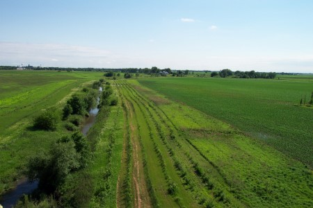 Photo of Riparian Forest Buffer planting along stream bank in Bear Creek, IA. Richard Straight, USDA Forest Service