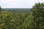 Photo of Landscape photograph of the Missouri Ozark forests. Dan Dey, USDA Forest Service