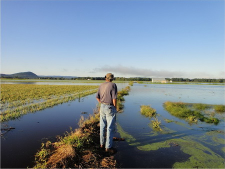 Photo of Fourth generation farmer Chris Pawelski's onion fields were destroyed by flooding from Hurricane Irene in 2011. USDA