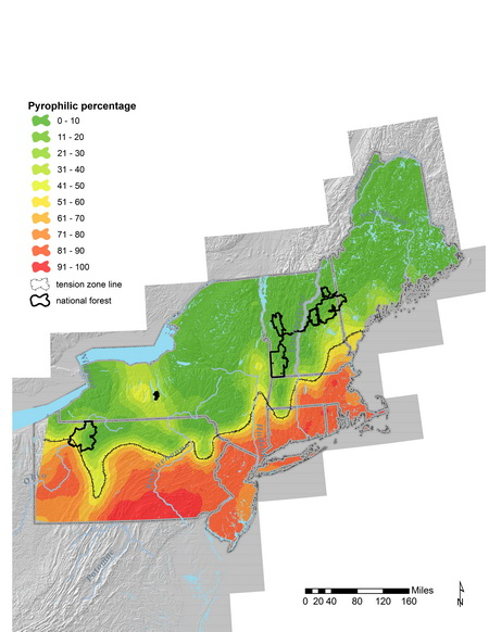 Photo of A map showing the boundaries of Pennsylvania, New Jersey, New York, Massachusetts, Connecticut, Rhode Island, Vermont, New Hampshire, and Maine.  The outlines of four national forests are also included.  The results of calculating the percentage of pyrophilic witness tree species from town-level surveys are displayed as a color gradient from red to green, with red indicating a high percentage of pyrophilic species and green a low percentage.  The red starts in the south and grades to green further north.  Also displayed is an approximation of the tension zone line between generally wetter forests to the north and drier forests to the south. USDA Forest Service