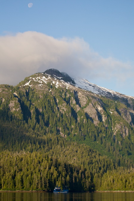 Photo of Regional change in southeast Alaskan forests is created by asymmetrical fine-scale disturbance and growth. USDA Forest Service