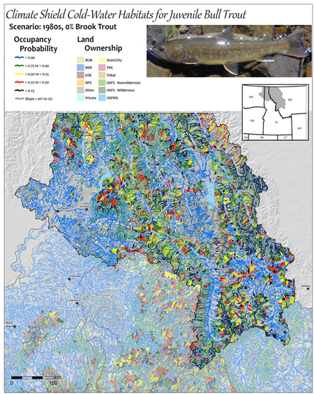 Photo of Modeled bull trout habitat in western Montana and northern Idaho. Color coding indicates the estimated likelihood of a stream providing spawning and rearing habitat for bull trout.  USDA Forest Service