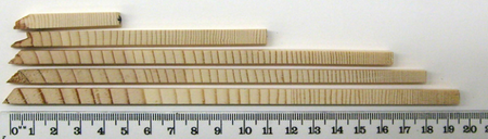 Photo of Cores from a 100-year old ponderosa pine tree. USDA Forest Service