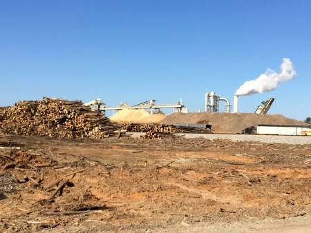 Photo of The Enviva Corporation wood pellet mill, Northampton, NC. The South is now the largest wood pellet producing region in the U.S., and this industry is forecast to continue to expand over the next few years. Nearly all (99 percent) of these pellets are being exported to the European Union to burn for electricity.  USDA Forest Service