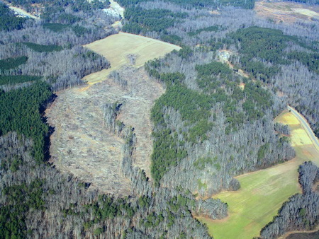 Photo of An aerial view shows an experimental watershed study on the hydrologic impacts of forest clearing in North Carolina's Piedmont region. David Jones, North Carolina Forest Service