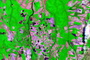 Photo of Tropical forest clearing and rates of forest regrowth can be monitored with multispectral satellite imagery for forest carbon accounting for programs such as the United Nations REDD+ program.  U.S. Geological Survey, the Brazilian Institute for Space Research, and NASA.