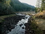 Photo of Trout Creek, Washington, after removal of the Hemlock Dam. USDA Forest Service