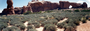 Photo of Blackbrush plant community in the Arches National Park, Utah. USDA forest Service