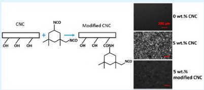 Photo of Chemical modification can make cellulose nanocrystals compatible with polymer resins and thermoplastics. Greg Scheunaman, U.S. Department of Agriculture Forest Service.