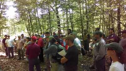 Photo of A diverse mix of managers and scientists join in the field to discuss and discover creative solutions for oak regeneration using prescribed fire. Erin Lane, U.S. Department of Agriculture Forest Service.
