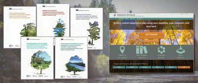 Photo of The Adaptation Workbook online tool is a structured tool for land managers to use to integrate climate change into management plans. Users of the tool draw from ecosystem vulnerability assessments published by the Forest Service's Northern Research Station. Danielle Shannon, Northern Institute of Applied Climate Science.