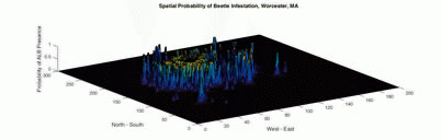 Photo of The surface of the graph shows the probability of finding the Asian longhorned beetle within the infested area around Worcester, MA. Risk is estimated on a hectare scale. R. Talbot Trotter, U.S. Department of Agriculture Forest Service.