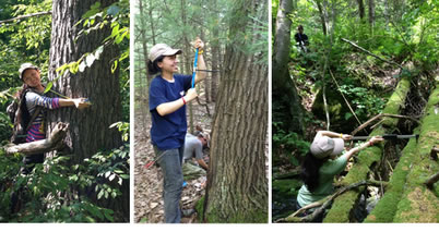 Photo of Bing Xu and the student field crew from Penn re-measured tree and soil attributes in the intensive study plots. Yude Pan, U.S. Department of Agriculture Forest Service.
