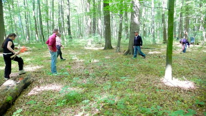 Photo of Image of the beech forest from which the soil monoliths were removed (Hainich National Forest, Germany). Project partners searching for appropriate sampling sites. Zachary Kayler, U.S. Department of Agriculture Forest Service.