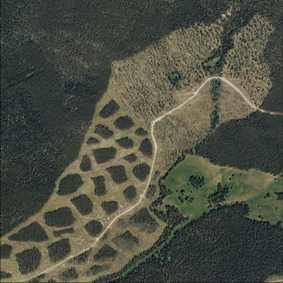 Photo of Satellite imagery of clumped (lower left) and dispersed retention (upper right) at Tenderfoot Creek Experimental Forest, Montana. U.S. Department of Agriculture Forest Service