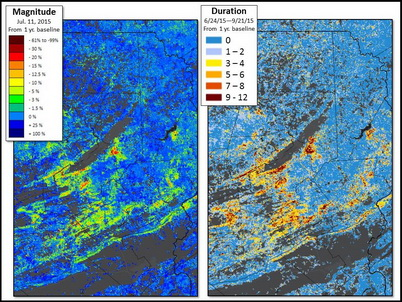 Photo of ForWarn allowed researchers and managers to monitor the magnitude (left) and duration (right) of damage from the 2015 gypsy moth outbreak in Pennsylvania. For every map cell, duration of the disturbance over the growing season is shown as the number of Map images courtesy of ForWarn. U.S. Department of Agriculture Forest Service.