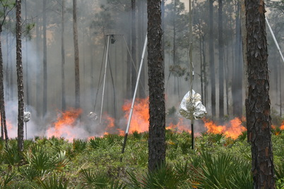 Photo of Thermal imaging systems developed by CFDS during prescribed fire, Eglin AFB 2016. Joseph J. O'Brien, U.S. Department of Agriculture Forest Service.