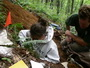 Sampling forest soil at Equinox Preservation Trust, Vermont. Rick LaDue, Equinox Preservation Trust.