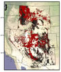 Photo of Interior west states showing Forest Inventory and Analysis plots (black dots) and plots with tree-ring data (red dots). Justin DeRose, U.S. Department of Agriculture Forest Service.