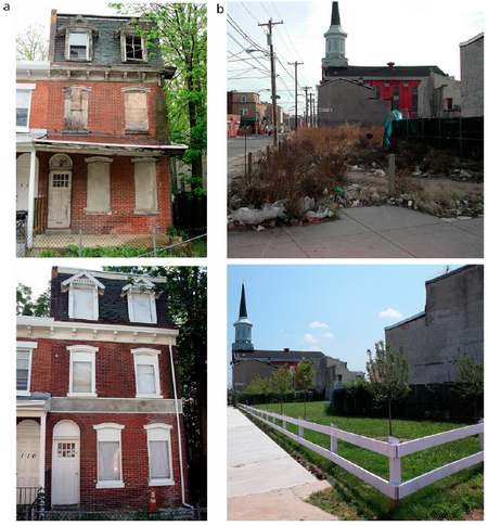 Photo of Photos of remediated buildings and vacant lots.